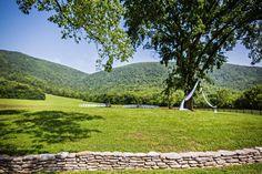 The Vista at Springtree Farms