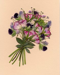 rose and pea.jpg (397×494)