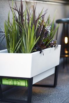 Glowpear Urban Garden Smart Planter