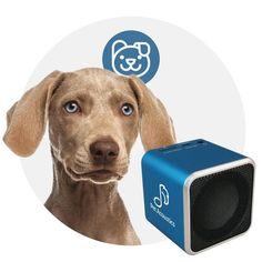 """""""El Pet Tunes para perros es una bocina con música pre-cargada con música especial que contiene una frecuencia que ha sido probada y aprobada clinicamente para reducir el estrés de los perros. Pet Tunes tranquiliza a los perros con ansiedad por separación, perros que no soportan los sonidos y luces de los fuegos artificiales, que tienen fobias de ciertos sonidos, que ladran excesivamente, etc.""""…"""