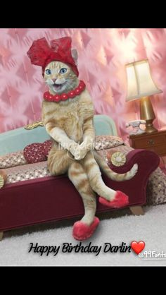 """""""Sexy Cat"""" by John Lund: A sexy cat sits on the edge of a bed wearing a red hat, red slippers and a red necklace giving new meaning to the term sex kitten. Funny Animal Videos, Cute Funny Animals, Funny Animal Pictures, Cute Baby Animals, Funny Cats, I Love Cats, Crazy Cats, Cool Cats, Cute Kittens"""