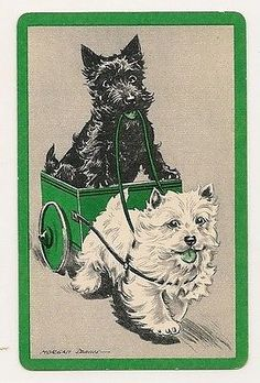 Vintage Scotties Playing Card  #ScottishTerriers