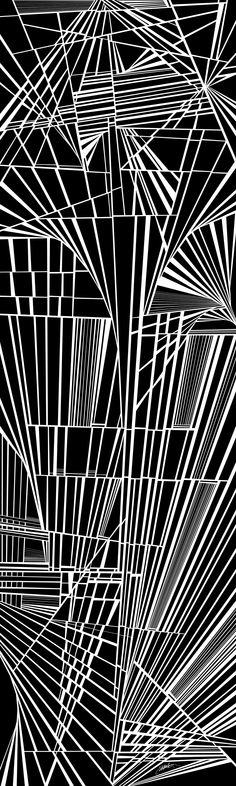 Propagandists - dynamic black and white optical obsession, organic abstract by Douglas Christian Larsen - the propagandists are smooth, friendly, convincing, slick and coiffed, and what they say you can get behind, it is simple, yet dynamic, and it is a joy to receive, believe, and propagate, because it says we are special and they are demons, we will win, we must win, and they must disappear, and what they say is far simpler than the truth