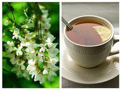 Cura cu ceai de SALCÂM pentru reducerea STRESULUI și calmarea sistemului NERVOS (migrene, insomnie, depresie)   LaTAIFAS Tableware, Insomnia, Syrup, Plant, Dinnerware, Dishes