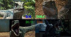 Jurassic World: The Raptors by sonichedgehog2 on DeviantArt