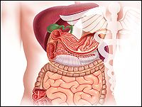 Probiotics in the Management of Lower GI Symptoms