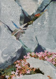 detail of Black-tailed Skimmer on Granite by Amanda Richardson - click to return