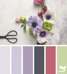 Color Spring | Design Seeds