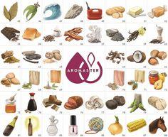 Aromaster Wein-Aroma-Set. 88 Weinaromen: 45.Lorbeerblatt, 46.Eukalyptus, 47.Jod, 48.Feuerstein, 49.Kerosin, 50.Brot, 51.Butter, 52.Karamell, 53.Schokolade, 54.Toast, 55.Kaffee, 56.Speck, 57.Rauch, 58.Teer, 59.Vanille, 60.Pfeffer, 61.Zimt, 62.Lakritz, 63.Muskatnuss, 64.Nelke, 65.Kokosnuss, 66.Haselnuss, 67.Mandel, 68.Eiche, 69.Sandelholz, 70.Zeder, 71.Kiefer, 72.Quittengelee, 73.Honig, 74.Sojasoße, 75.Leder, 76.Fleisch-Sauce, 77.Pilz, 78.Trüffel...