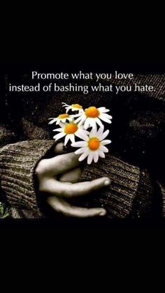 Promote love instead of bashing hate