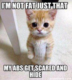 Meme Creator - I'm not fat just that my abs get scared and hide Meme Generator at MemeCreator.org!