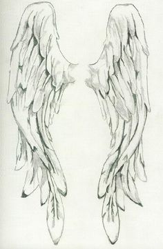Pencil Drawings of angel wings - Bing Images Drawing Sketches, Pencil Drawings, Art Drawings, Drawings Of Angels, Sketching, Angel Wings Drawing, Angel Wings Painting, Vintage Illustration, Desenho Tattoo