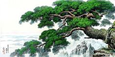 (North Korea) A Pine tree by Jeon Young (1964-  ).