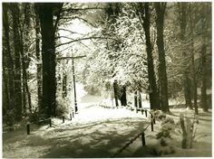 Romania, 1975, Snow, Outdoor, Outdoors, Outdoor Games, Human Eye