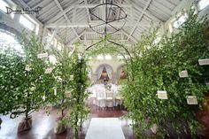 coo's cathedral wedding Quirky Wedding, Creative Wedding Photography, Alternative Wedding, Cathedral, Wedding Venues, Plants, Inspiration, Wedding Reception Venues, Biblical Inspiration