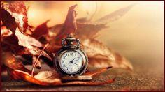 """""""Il tempo è la cosa più importante: esso è un semplice pseudonimo della vita stessa"""".  Da """"Lettere dal carcere"""", di Antonio Gramsci (1891 – 1937)  #fieralibrocerignola #AntonioGramsci #Letteredalcarcere #aforismi #frasi #citazioni #frasilibri #parolaailibri www.fieralibrocerignola.it"""