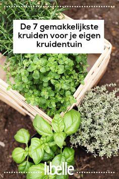 27 Tips from a Master Gardener – Survival Mom Love Garden, Herb Garden, Vegetable Garden, Balcony Plants, Garden Plants, Growing Herbs, Growing Vegetables, Herbs For Health, Garden Markers