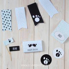 Nice Party pack de fiesta imprimible oso panda mint