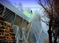 Want to ride across a European Border? Find this bridge between Austria and Slovakia. Steel Structure, Bratislava, Austria, Fair Grounds, Stairs, Places, Outdoor Decor, Travel, Image
