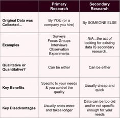 primary research examples business plans