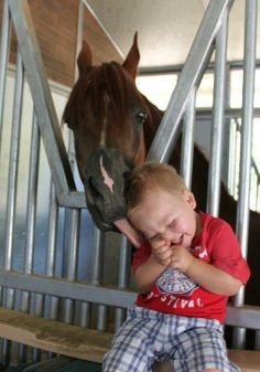 horses and babies together are cute