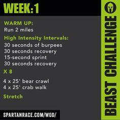 WEEK 1.2 : BEAST CHALLENGE