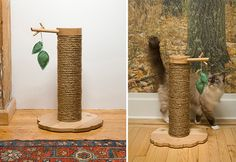 Sequoia Scratching Post from Tails End