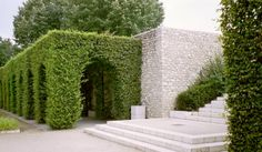 Grassy archway and gorgeous run of what seems to be marble stepping #gardening #GardenofEden