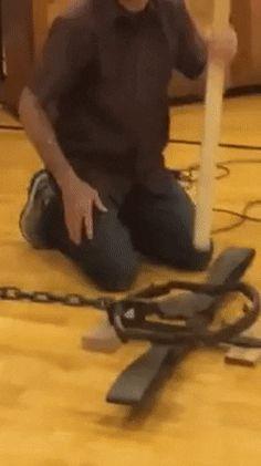 Man Punches Bear Trap http://ift.tt/2xuHq8f