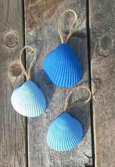 Set of 3 Colorful Painted Seashell Wedding Decor Home blue light ombre Hanging Nautical Rope shell Gift Ornament Decoration