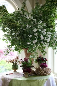 http://www.ariellaflowers.com/files/gimgs/102_gw2.jpg