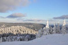 Germany, Harz, winter, Woods, wald, bäume, baum, trees, snow, Schnee, wandern, hiking, nature, Natur, photography, fotografie, photografie