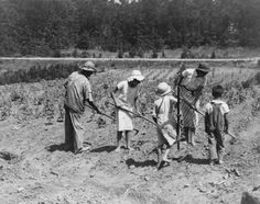 Historical Photo Archives the great depression | Description: Photo of Alabama tenant farmer and children. Family labor ...