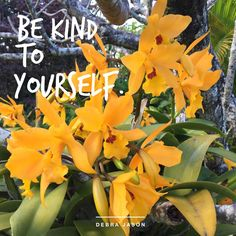 Remember, to be kind to yourself. #positivity #positivevibes #nurtureyourself #selfcare #inspiration