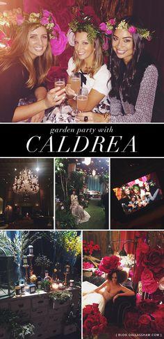 Dallas Shaw Blog { caldrea garden party }