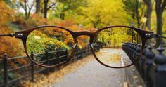 oculos-cinemagrafia-3