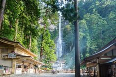 Nachi Falls | par shinichiro*@OSAKA