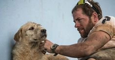 """Stray Dog Clings To Adventure Racers, 430 Miles Later He Refuses To Leave New """"Family."""" Stray Dog Clings To Adventure Racers, 430 Miles Later He Refuses To Leave New """"Family."""" Stray Dog Clings To. King Arthur, Ecuador, Fondation Brigitte Bardot, Loyal Dogs, Dog Stories, Stray Dog, Mans Best Friend, A Team, Team Member"""