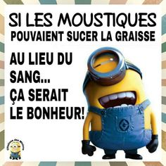 citations petits minions Plus Minion Humour, Minion S, Minion Jokes, Minions Quotes, Minions Minions, French Quotes, Funny Photos, Funny Jokes, Haha