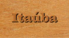Conheça a Itaúba, uma madeira resistente a cupins e fungos com ótimas propriedades mecânicas e bom acabamento.