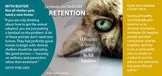 Pet Retention