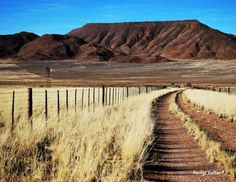 Two Spoor Farm access road on the way to Luderitz. Everything is pretty in the late afternoon light.