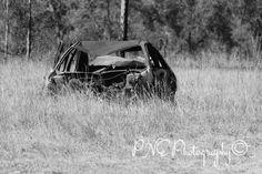 """Native scrub car plant"" 😆😜 #photo #photography #photoart #photoblog #ThePhotoHour #PNEPhotography #humour"