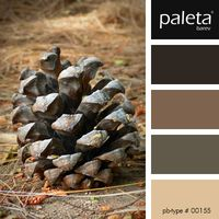 PALETA #00151 - #00200