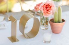 These gold table numbers paired with a simple cactus and a small vase of roses are lovely!