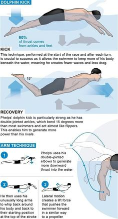 king: Michael Phelps' reign explained Interesting infographics on Michael Phelps, and why he is the Butterfly king.Interesting infographics on Michael Phelps, and why he is the Butterfly king. Swimming Drills, Swimming Memes, Competitive Swimming, Swimming Tips, Swimming Diving, Swimming Workouts, Scuba Diving, Swimming Pictures, Michael Phelps