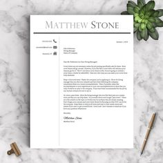 Professional Resume Template For Word  Pages  Professional Cv