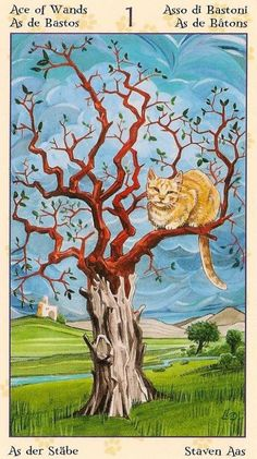 Ace of Wands ~ Tarot of the Pagan Cats deck