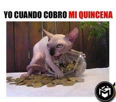 Cuando cobro mi salario. #humor #risa #graciosas #chistosas #divertidas