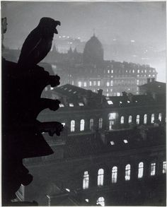 Brassaï   Oiseau, vue de Notre-Dame sur l'Hôtel-Dieu 1933  Bird, view from Notre-Dame over Hotel-Dieu